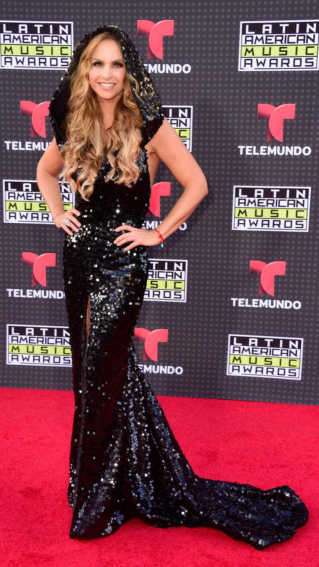 HOLLYWOOD, CA - OCTOBER 08: Lucero Hogaza Leon aka Lucero attends Telemundo's Latin American Music Awards at the Dolby Theatre on October 8, 2015 in Hollywood, California. (Photo by Frazer Harrison/Getty Images)